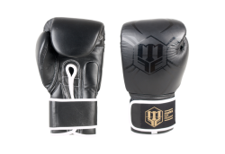 Boxing gloves RBT-BLACK 12 oz