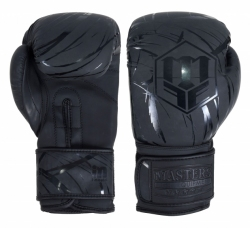 Boxing gloves RPU-COLOR/COLOR